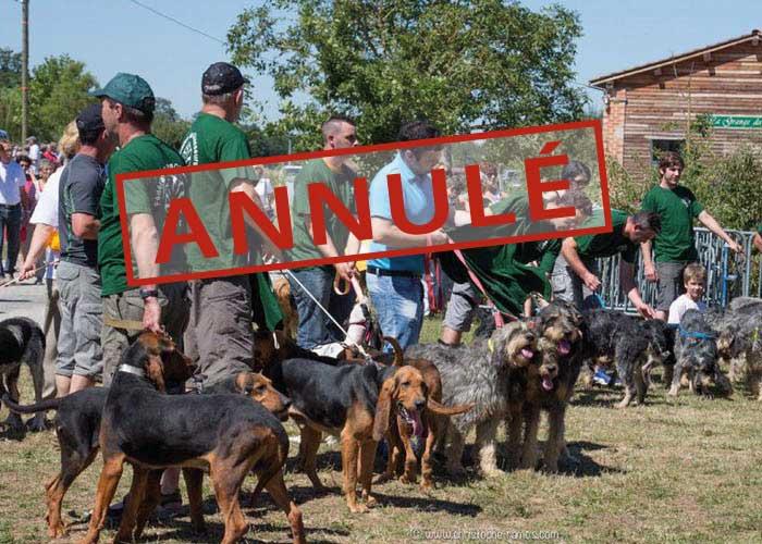Logo Fête du chien, de la chasse et de la nature